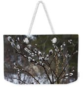 Pussy Willow In The Rain Weekender Tote Bag