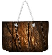 Pussy Willows In The Warm Sunlight Weekender Tote Bag