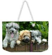 Pyrenean Sheepdogs Weekender Tote Bag