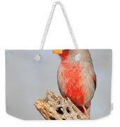 Pyrrhuloxia On Cholla Rib Weekender Tote Bag