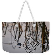Pythagoras The Frog Weekender Tote Bag