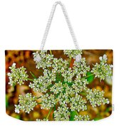 Queen Anne's Lace Or Wild Carrot Near Alamo-michigan Weekender Tote Bag
