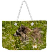 Raccoon In The Meadow Weekender Tote Bag
