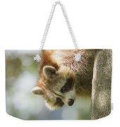 Raccoon Portrait Weekender Tote Bag