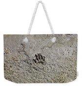 Raccoon Print Weekender Tote Bag