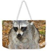 Raccoon Procyon Lotor Adult Foraging Weekender Tote Bag