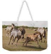 Racing Zebras 1 In Color Weekender Tote Bag