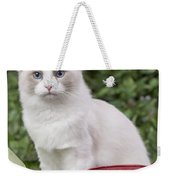 Ragdoll Cat Weekender Tote Bag