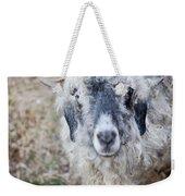 Raggedy Goat Weekender Tote Bag