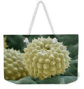 Ragweed Pollen Weekender Tote Bag