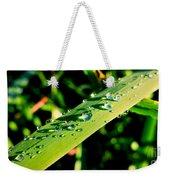 Rain Blade Weekender Tote Bag