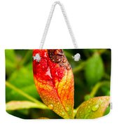 Rain Drops On Colorful Leaf Weekender Tote Bag