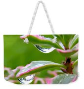 Raindrops On Sedum Weekender Tote Bag
