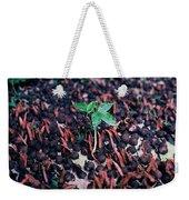 Rain Forest Seedling, Indonesia Weekender Tote Bag