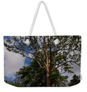 Rainbow Eucalyptus - Tall Proud And Beautiful Weekender Tote Bag