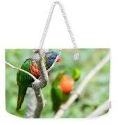 Rainbow Lorikeet Parrot Trichoglossus Haematodus Weekender Tote Bag
