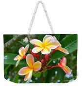 Rainbow Plumeria - No 4 Weekender Tote Bag