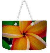Rainbow Plumeria Weekender Tote Bag