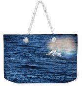 Rainbow Spout Weekender Tote Bag