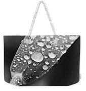 Raindrops On Grass In Black And White Weekender Tote Bag