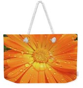 Raindrops On Orange Daisy Flower Weekender Tote Bag