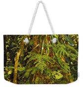 Rainforest Colors Weekender Tote Bag