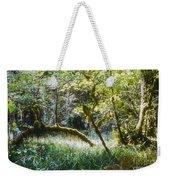 Rainforest Landscape Weekender Tote Bag