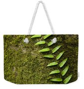 Rainforest Vine Climbing Sabah Borneo Weekender Tote Bag
