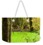 Rainforest Wetland Wildernis Of West Coast Bc Weekender Tote Bag