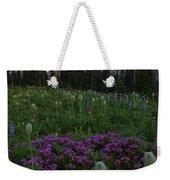 Rainier Pastel Dawn Weekender Tote Bag