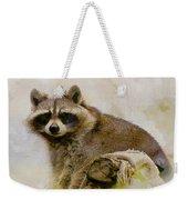 Rakish Raccoon  Weekender Tote Bag