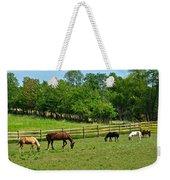 Ranch Daisies Weekender Tote Bag