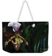Rare Orchid - Paphiopedilum Gratrixianum Weekender Tote Bag