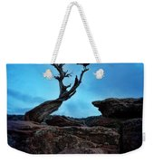 Raven On Twisted Tree With Moon Weekender Tote Bag