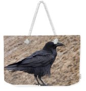 Raven Perched On A Ledge Weekender Tote Bag
