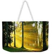 Rays Of Sun Weekender Tote Bag