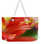 Reach Abstraction Limited Edition Bodecoarts Weekender Tote Bag