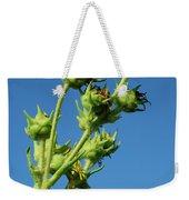 Reach Weekender Tote Bag by Christi Kraft