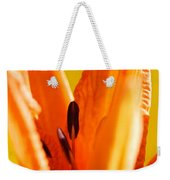 Reach For The Light Weekender Tote Bag