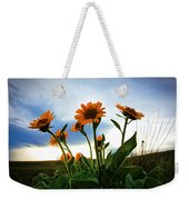 Reach To The Heavens Weekender Tote Bag