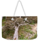 Rebirth On The Coast Weekender Tote Bag