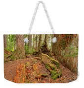 Recycling In The Cheakamus Rainforest Weekender Tote Bag