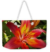 Red And Orange Lilly In The Garden Weekender Tote Bag