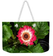 Red And White Gerber Daisy Weekender Tote Bag