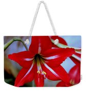 Red And White Lilly Weekender Tote Bag by Debra Forand