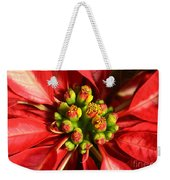 Red And White Poinsettia Flower Weekender Tote Bag by Catherine Sherman