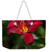 Red And Yellow Daylily  Weekender Tote Bag