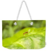 Red Ant On Green Leaf Weekender Tote Bag