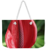 Red Anthurium #2 Weekender Tote Bag