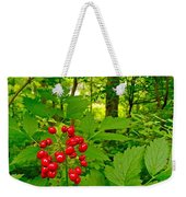 Red Baneberry Along Rivier Du Nord Trail In The Laurentians-qc Weekender Tote Bag